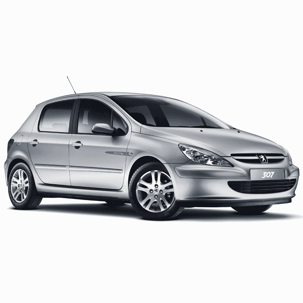 Peugeout 307